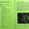 Programm des Abschlusskonzertes der