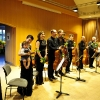Hofer Cellotage 2013