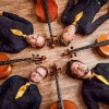 Römhild 2020 (für das Meininger Tageblatt), Beneckenstein 2019, Hof 2018 (5. Hofer Cellotage) (für die Frankenpost (fp)) (Foto: Josefine Weyer)
